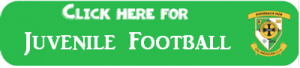 Juvenile Football Logo
